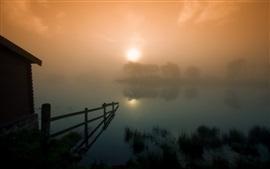 Lago, árboles, cabaña, niebla pesada, por la mañana