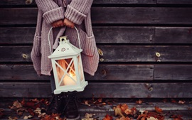 Lantern, girl, autumn, leaves