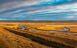 Pasto, caballos, río, hierba, cielo, nubes
