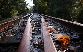 Preview wallpaper Railroad, leaves, stones, blurry background