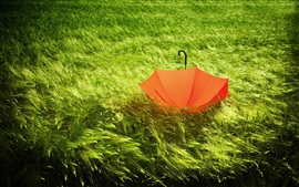 Preview wallpaper Red umbrella in the grass