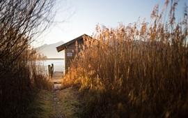 Reeds, cabana, doca, lago