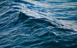 Mar, ondas, close-up