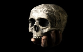 Preview wallpaper Skull, hand, black background