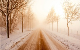 Preview wallpaper Winter, road, snow, trees, fog, morning