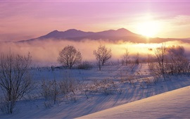 Preview wallpaper Winter, snow, morning, sunrise, trees, mist