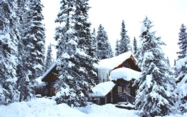Winter, thick snow, trees, houses