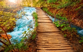 Preview wallpaper Wood bridge, path, nature, stream