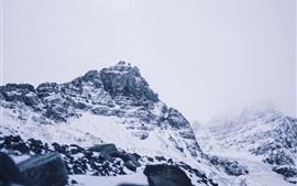 Athabasca, geleira, montanhas, neve, Canadá