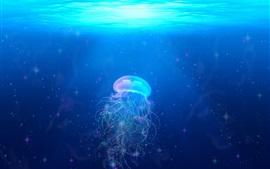 Aperçu fond d'écran Belle méduse, sous l'eau, bleue