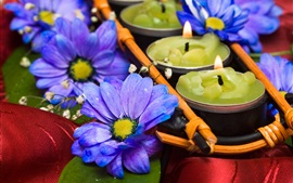 Preview wallpaper Blue chrysanthemum, candles, flame, SPA