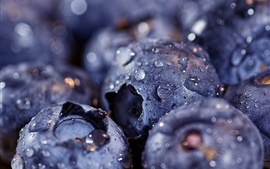 Preview wallpaper Blueberries macro photography, water drops