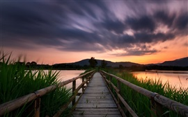 Bridge, lake, grass, sunset