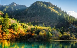 China, Jiuzhaigou, trees, mountains, lake, autumn