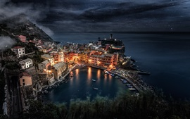 Preview wallpaper Cinque Terre, Italy, night, sea, houses, lights, top view