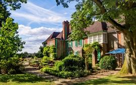 Inglaterra, Oxford, arbustos, árboles, hierba, casas, día soleado