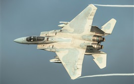 F-15C fighter flight in sky