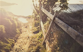 Cerca, caminho, luz solar, brilho