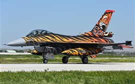 Fighting Falcon F-16C 전투기