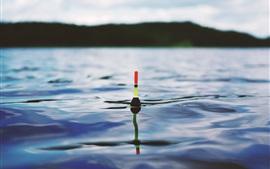 Рыбалка, поплавок, озеро, вода