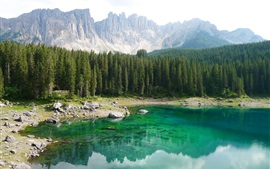 Preview wallpaper Italy, South Tyrol, Dolomites, forest, trees, mountains, lake