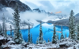 Lake, trees, snow, winter, fog, clouds, mountain