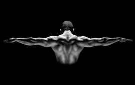 Man muscular show, back view, black background
