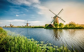 Netherlands, river, windmill, grass, beautiful scenery