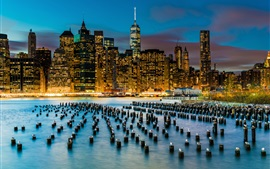 Preview wallpaper New York, skyscrapers, river, stumps, seagulls, USA