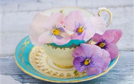 Preview wallpaper Pansy flowers, cup, saucer