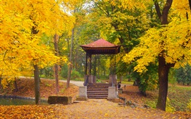 Park, autumn, trees, gazebo, yellow leaves