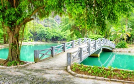 Park, bridge, trees, lake, Vietnam
