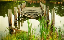 Pier, broken, grass, river