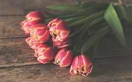 Preview wallpaper Pink flowers, tulips