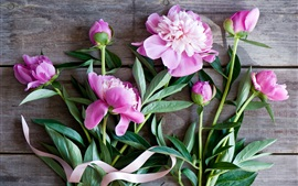 Preview wallpaper Pink peonies, flowers, wood board