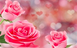 Preview wallpaper Pink roses, love hearts background, romantic