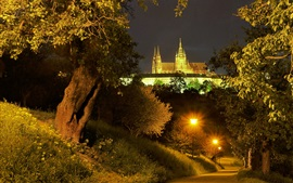 Preview wallpaper Prague, Czech Republic, road, trees, lights, palace, night