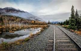 Railroad, stones, lake, trees, fog, autumn