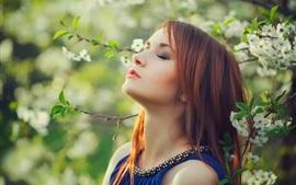 壁紙のプレビュー 赤毛の女の子、白い花、木、春