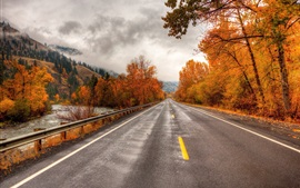 Preview wallpaper Road, trees, autumn