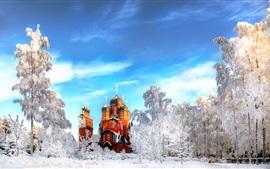 São Petersburgo, templo, inverno, neve, árvores