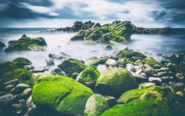 Preview wallpaper Sea, stones, moss, clouds, nature