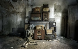 Preview wallpaper Skull listen radio, ruins, room, dirt