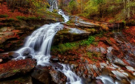 Preview wallpaper Slope, waterfall, trees, autumn