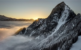 Preview wallpaper Snow mountains, trees, fog, sunrise