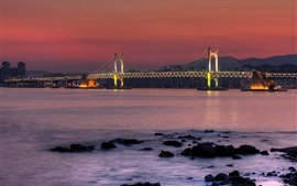 Preview wallpaper South Korea, bridge, bay, river, city night, lights