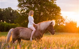 White dress girl riding horse, grass, sunshine