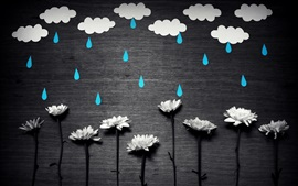 Preview wallpaper White flowers, blue rain, white clouds, creative picture