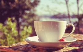 White mug cup, saucer, sunlight