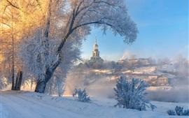 Зима, снег, деревья, здания, город, Торжок, Россия